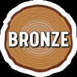 TreeRing_bronze
